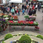 Blumenmarkt in der Merziger Innenstadt