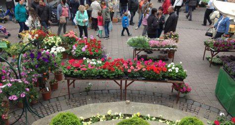 Kreisstadt Merzig: Blumenmarkt – Marché aux fleurs