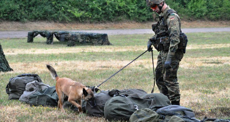 Bundeswehr_Sprengstoffsuchund