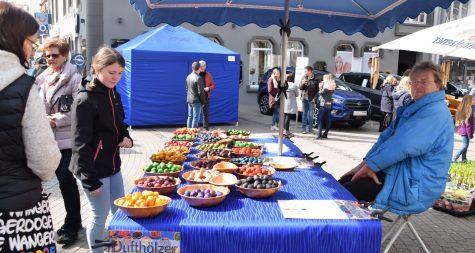 Kreisstadt Merzig: Frühlingsfest – Fête du printemps