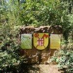 Auf einem Naturstein wurde das Mondorfer Wappen angebracht. Der Stein ist umrandet von Pflanzen.