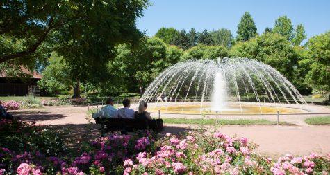 Sehenswürdigkeiten in Merzig: Merziger Stadtpark – Merzig Park