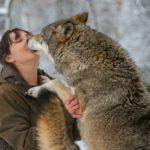 Tatjana Schneider mit einem Wolf im Schnee