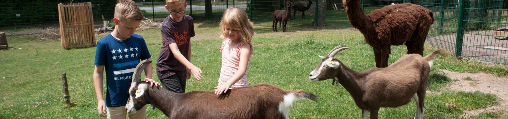 Sehenswürdigkeiten in Merzig: Merziger Tierpark