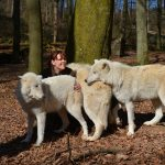 Wolfspark_Werner_Freund_Tatjana_Schneider