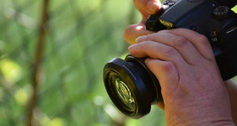 Pressemeldung:  Fotoaktion der Kreisstadt Merzig