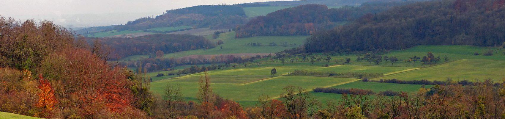 Blick auf Wiesen und Felder vom Nackberg