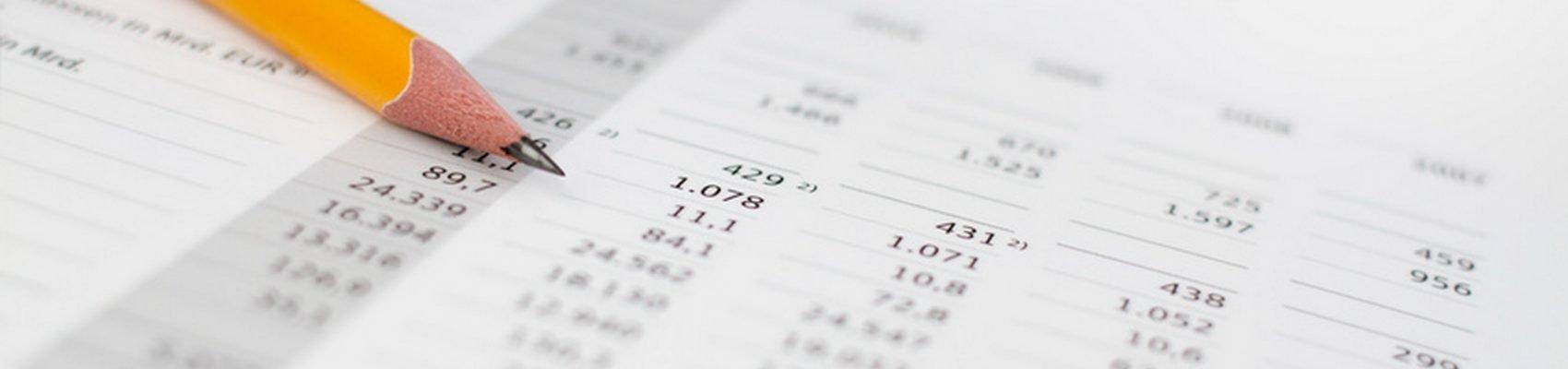 Rechnungsprüfungsausschuss