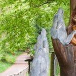 Holzskulptur im Wolfspark Werner Freund