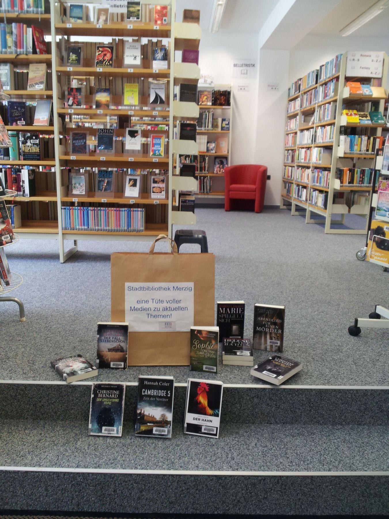 Das Bild zeigt eine Medientüte der Stadtbibliothek mit verschiedenen Büchern.