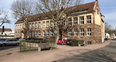 Pressemeldung:  dm-drogerie markt GmbH errichtet Testzentrum im Merziger Vereinshaus